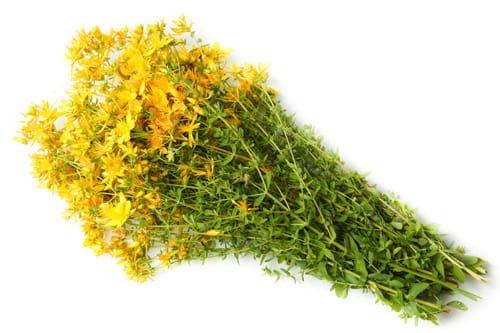 Лекартсвенная трава