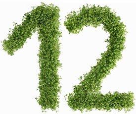 dieta-12_stol-12_index
