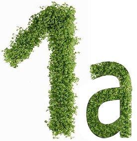 Диета №1а (стол №1а) – питание при остром гастрите и обострении язвы желудка и двенадцатиперстной кишки