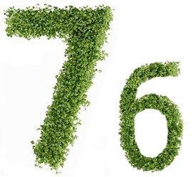 Диета №7б (стол №7б) – лечебная система питания, которую назначают при нефрите, обычно после диеты 7а