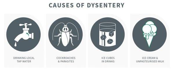 Причины развития дизентерии