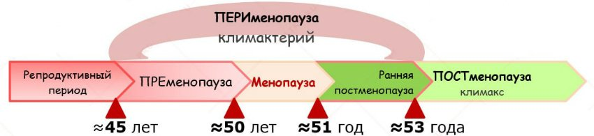 stadii-menopayzi